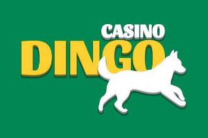 come iscriversi a dingo casino